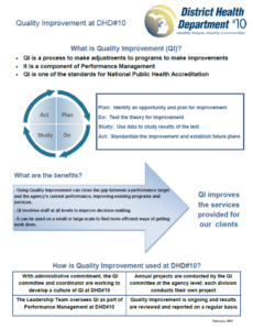 DHD#10 Quality Improvement Document