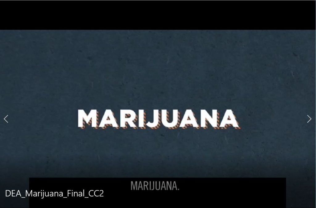 Facts and Fiction - Marijuana Video Thumbnail
